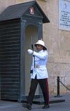 Guardia de honor Fotografía de archivo libre de regalías