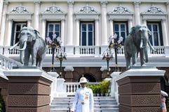 Guardia de palacio magnífico foto de archivo
