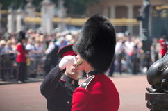 Guardia del Buckingham Palace fotos de archivo libres de regalías