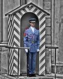 Guardia del castello Fotografia Stock Libera da Diritti