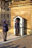 Guardia del castillo de Praga fotografía de archivo