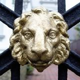 guardia del leone Fotografia Stock Libera da Diritti