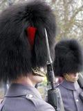 Guardia del Queens Imagenes de archivo