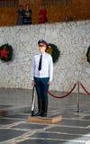 Guardia del soldato in Corridoio di gloria militare Mamayev complesso commemorativo Kurgan a Volgograd Fotografia Stock Libera da Diritti