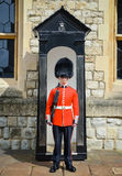 Guardia della regina s, Buckingham Palace, Londra Fotografia Stock