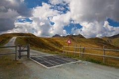 Guardia di bestiame nelle montagne di Tirolo Immagine Stock