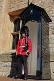 Guardia di Coldstream Fotografia Stock