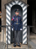 Guardia di onore Immagine Stock