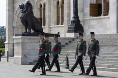 Guardia di onore - costruzione del Parlamento - Budapest Immagine Stock Libera da Diritti