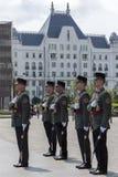 Guardia di onore - costruzione del Parlamento - Budapest Fotografia Stock Libera da Diritti