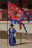 Guardia di palazzo, Seoul, Corea del Sud Immagini Stock