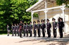 Guardia di re Fotografia Stock