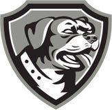 Guardia Dog Shield Black di Rottweiler e bianco Immagine Stock Libera da Diritti
