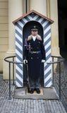 Guardia en el castillo de Praga Imágenes de archivo libres de regalías