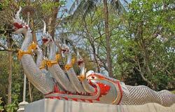 guardia notturna dalla testa molta del dragonthe di un tempio Immagine Stock