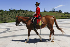 Guardia real con el caballo Imagen de archivo libre de regalías