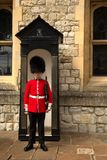 Guardia reale in torre di Londra Fotografie Stock