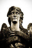 Guardian angel face. Tombstone guardian angel statue face Royalty Free Stock Images