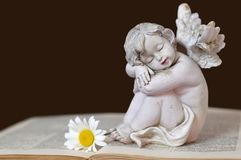 Guardian angel and flower. Guardian angel and daisy flower on the book Stock Photo