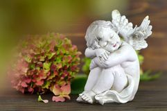 Guardian angel and flower. On wooden background Stock Photo
