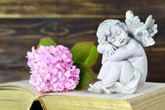 Guardian angel and flower. On old book Royalty Free Stock Photo