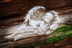 Guardian angel. On old wooden board Stock Images