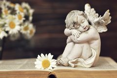 Guardian angel sleeping. On the book Royalty Free Stock Photography