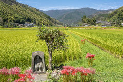 Guardian deity of rice field. In autumn country of Kagoshima stock images