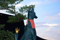 Guardian fox of Fushimi Inari Shrine, Kyoto Japan. Fushimi Inari shrine in Kyoto Japan, the scene of the architecture and the guardian fox at sunset Royalty Free Stock Photography