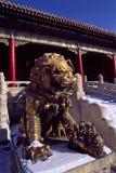 Guardian Lion Stock Images