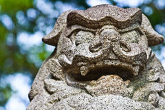 Guardian lion. Close up shot of Japanese guardian lion royalty free stock images