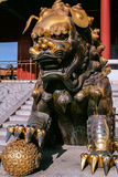 Guardian lion in the Forbidden City Stock Photography