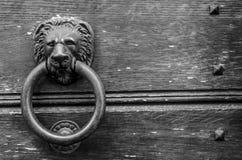Guardian lion of my door stock photo