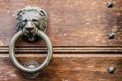 Guardian lion of my door stock image