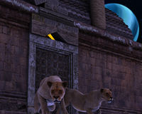 Guardian Lions of an ancient fantasy temple Stock Images