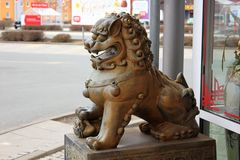 Guardian lions or Fo-dogs flank the entrance gates Buddhist temple. The guard lion or stone lion chin 石狮 Shíshī is a popular animal stock photography