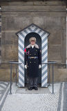 The presidential guard in Prague Royalty Free Stock Photos