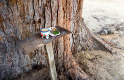 Guardian spirit worship table at the big pine cone. Guardian spirit worship alter at the big pine cone Stock Photos
