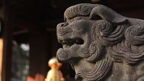 Guardiandog KOMAINU al santuario del santuario di Igusa a Tokyo video d archivio
