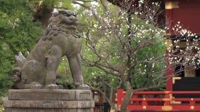 Guardianfox KITSUNE bij Nezu-heiligdom in Tokyo stock footage