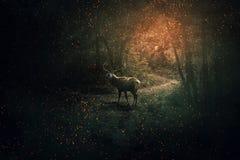 Guardiano della foresta fotografia stock