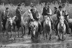 Guardians cross a river (Black & white) Stock Photos