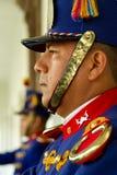Guardias de palacio Imagen de archivo libre de regalías