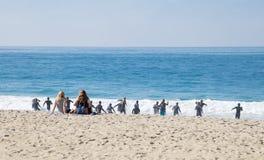 Guardias de vida de California del Laguna Beach en el entrenamiento Fotografía de archivo