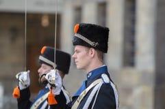 Guardie che cambiano alla ricezione dei nuovi anni dal re Of The Netherlands 2019 fotografie stock