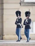 Guardie reali al palazzo di Amalienborg, Copenhaghen Danimarca fotografia stock libera da diritti