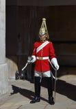 guardlivstidsdrottning s Royaltyfri Fotografi