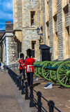 Guards at Castle Tower of London , UK. Royalty Free Stock Photos