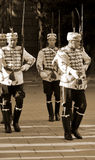 Guards of Honor Royalty Free Stock Images