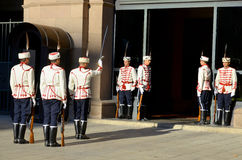 Guards of Honor Stock Photography